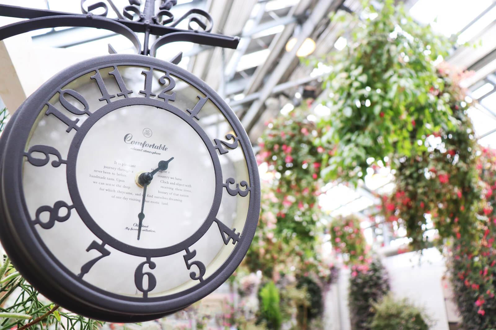 アリス感がある時計と花