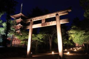 仁和寺ライトアップ