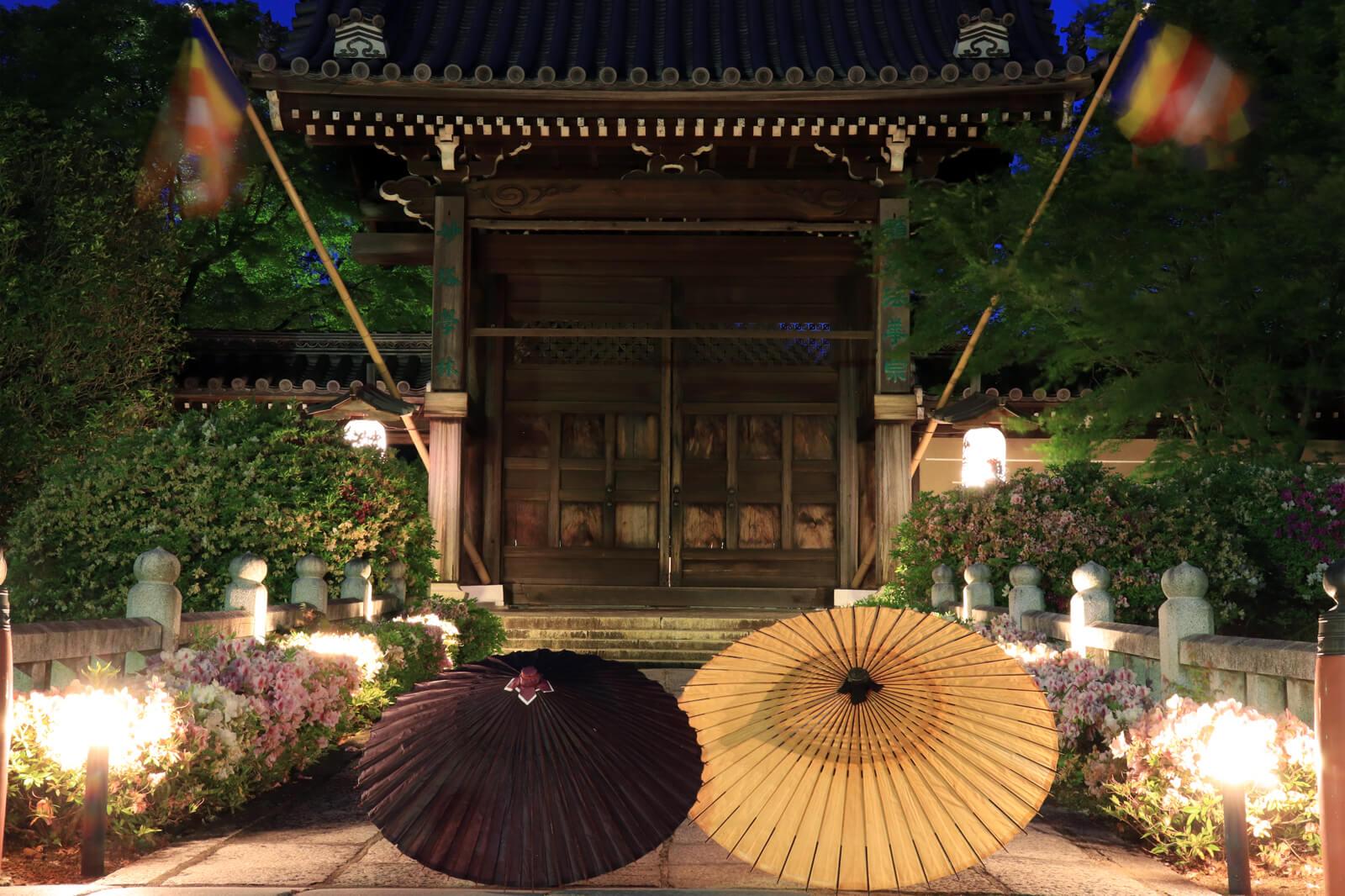 妙満寺のライトアップと和傘