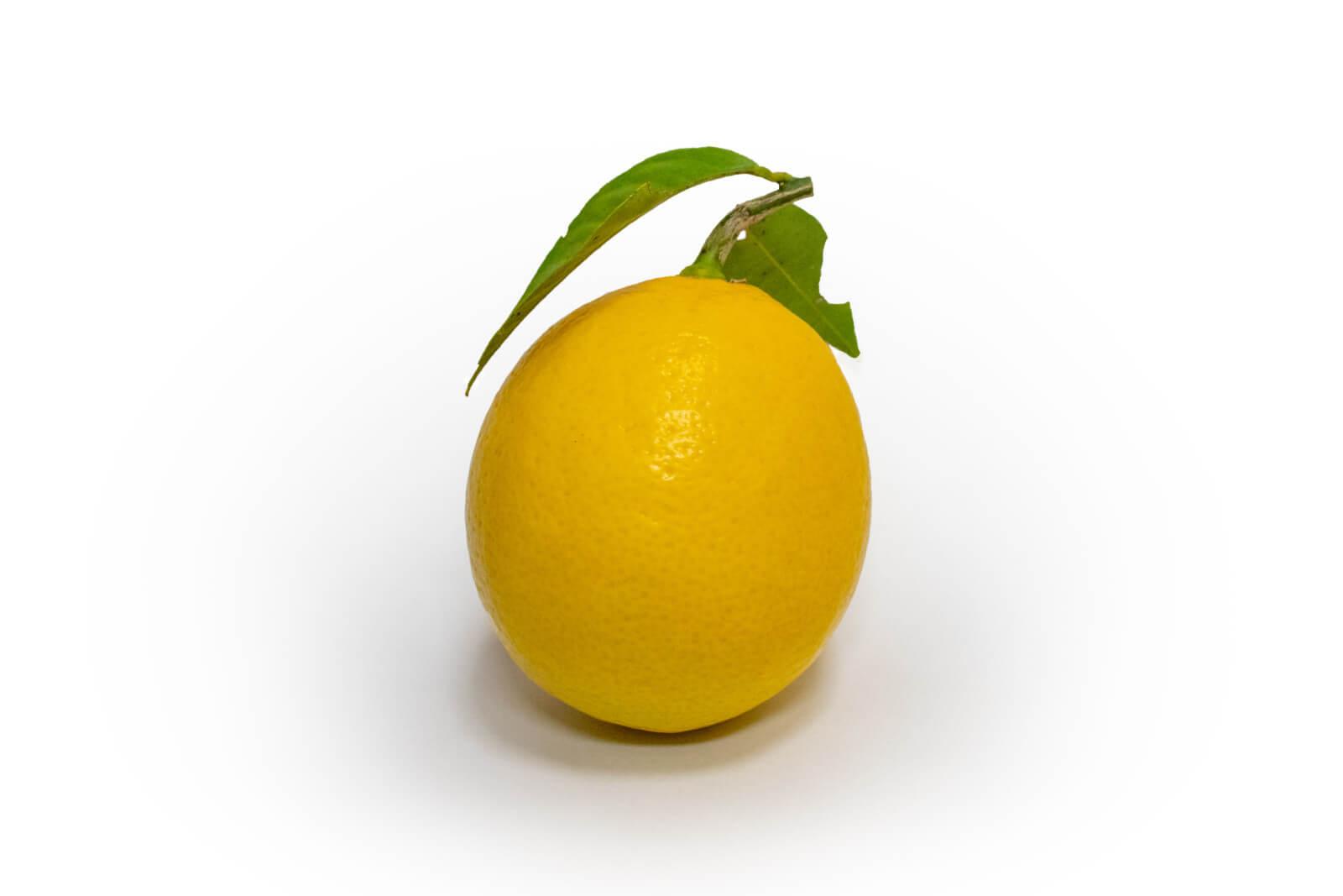 無農薬レモン1個(枝葉付き)