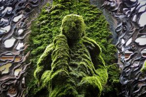 苔が付いた法善寺の不動明王