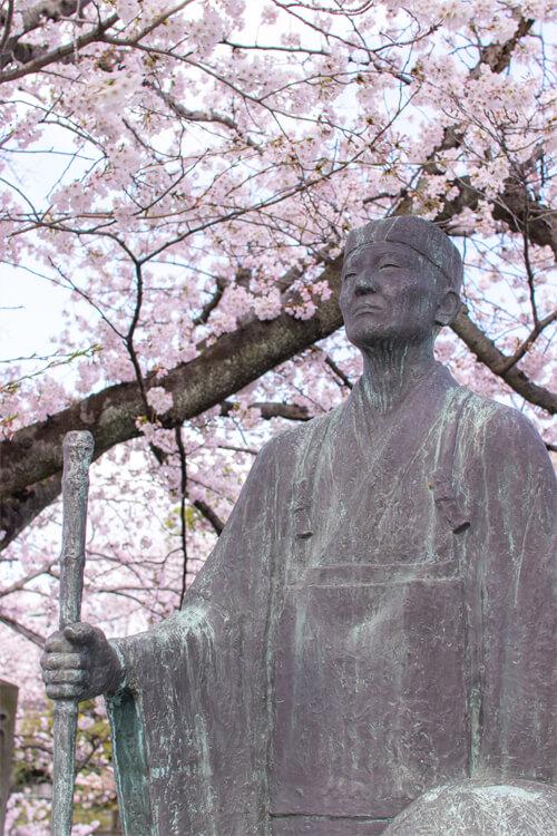 桜を愛でる松尾芭蕉