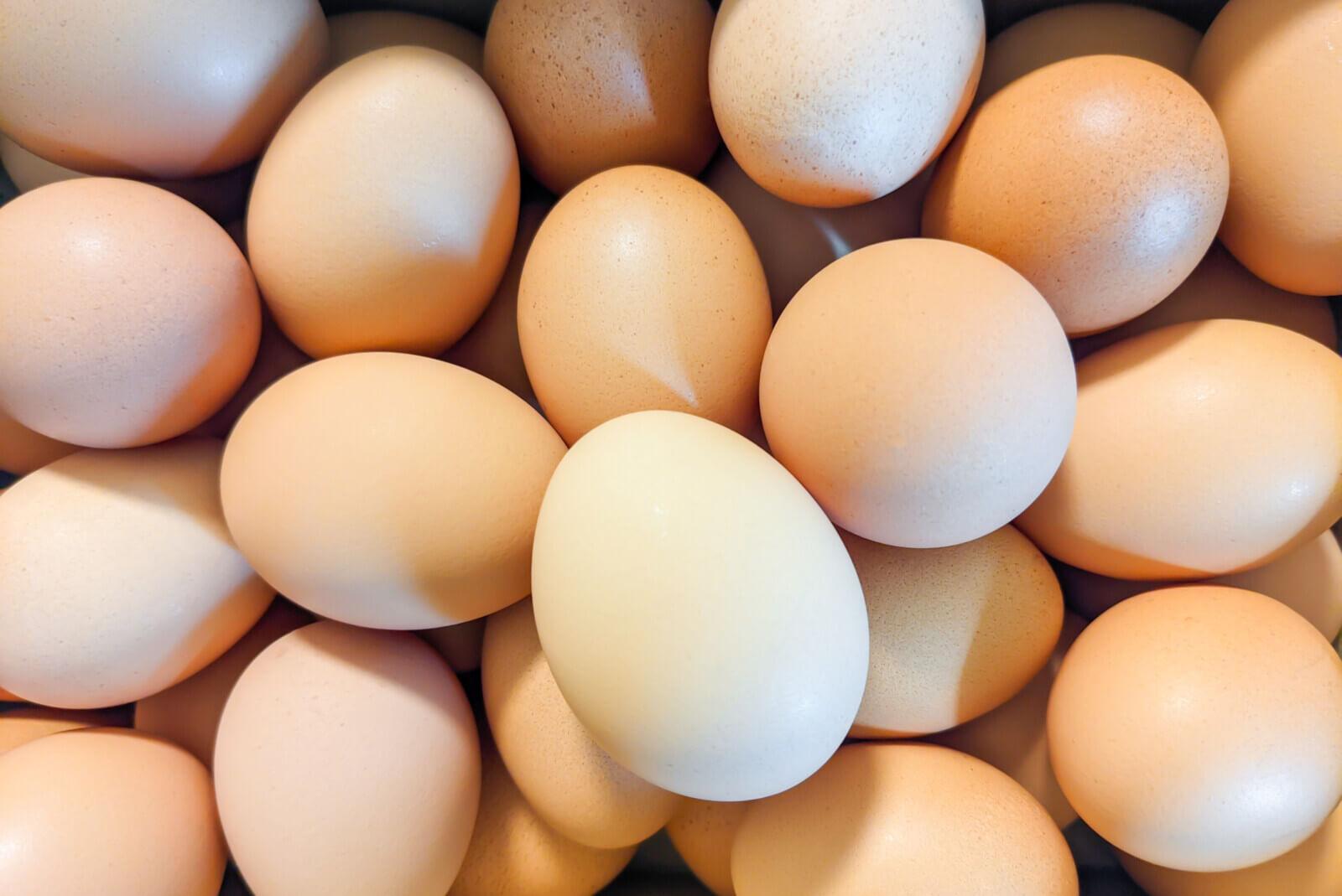 箱詰めの卵を真上から