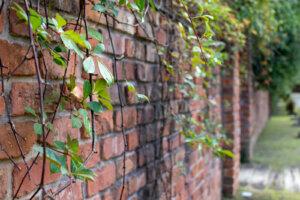 長いレンガの壁