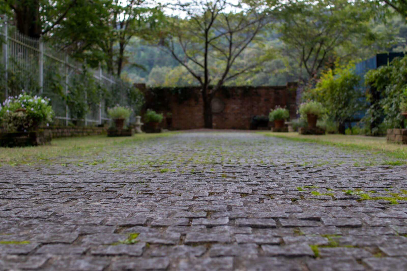 苔が生える石畳